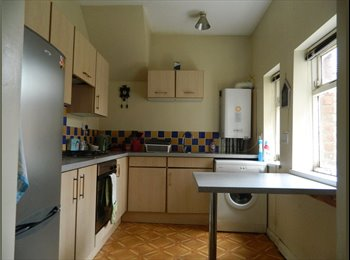 Sandyford ground floor flat available from July