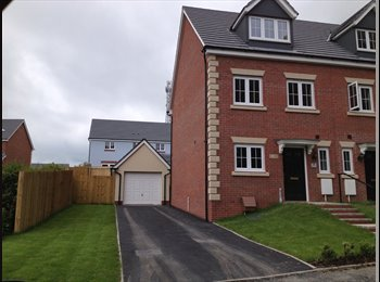 EasyRoommate UK - Double bedroom available for rent - Carmarthen, Carmarthen - £408 pcm