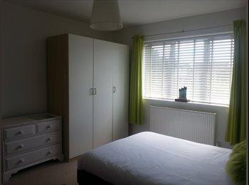 EasyRoommate UK - DOUBLE ROOM - STUDENT RATE - FAMILY HOME - Gillingham, Gillingham - £450 pcm