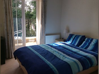 EasyRoommate UK - Double bedroom with ensuite- close to town centre - Basingstoke, Basingstoke and Deane - £832 pcm