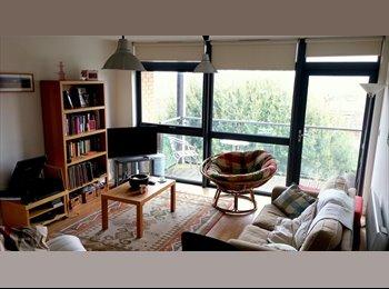 EasyRoommate UK - Professional flat share in lovely Redland - Redland, Bristol - £600 pcm