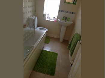 EasyRoommate UK - Room mate wanted - Shirebrook, Mansfield - £250 pcm