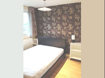 En Suite Room to Let in Professional House Share