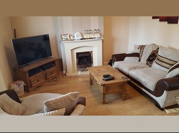 EasyRoommate UK - Room for rent in Wolverhampton - Ettingshall, Wolverhampton - £300 pcm