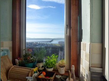 EasyRoommate UK - 3 Large Double Bedrooms + Gorgeous Tay View - Dundee, Dundee - £275 pcm