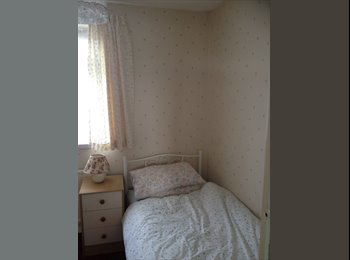 Single room in pink flowers Aylesbury