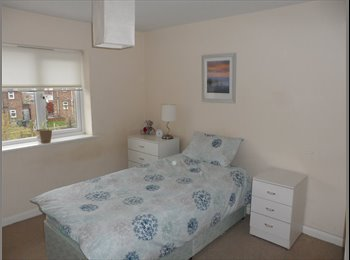 EasyRoommate UK - South Facing Warm Double Room - Quarry Bank, Dudley - £320 pcm