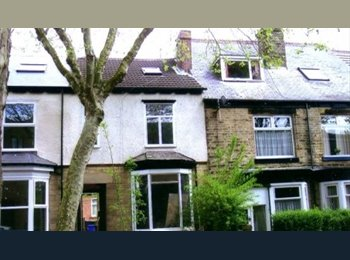 EasyRoommate UK - Room available in recently refurbished, homely student house! - Crookes, Sheffield - £320 pcm