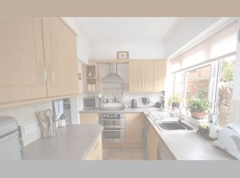 Single room in friendly house!