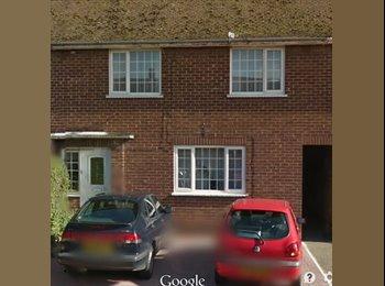 EasyRoommate UK - Chelmsford Large Room sky movies/sport internet - Chelmsford, Chelmsford - £425 pcm
