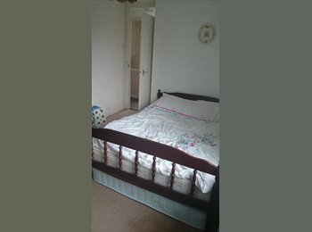 EasyRoommate UK - double room to rent  - Crewe, Chester - £200 pcm