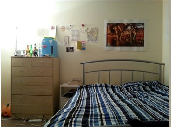 EasyRoommate UK - Comfortable Double Room in Wivenhoe - Wivenhoe, Colchester - £375 pcm