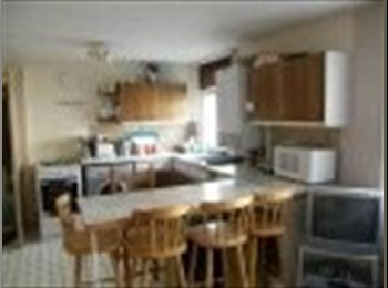 EasyRoommate UK - Student Short Let for summer. - Mutley, Plymouth - £280 pcm