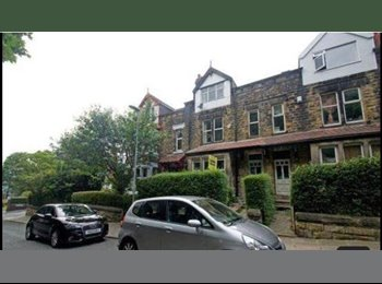 Lovely large terraced townhouse share in Kirkstall