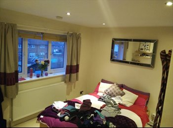 Large double room in Pound Hill