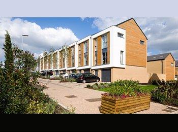 EasyRoommate UK - Double room at Firepool Lock - Taunton, South Somerset - £500 pcm