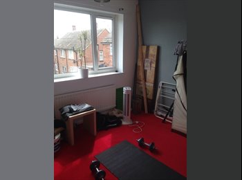 Room to let trimdon