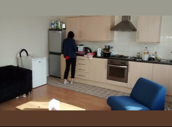 1 Bedroom in large 5 bed student house, Woodhouse