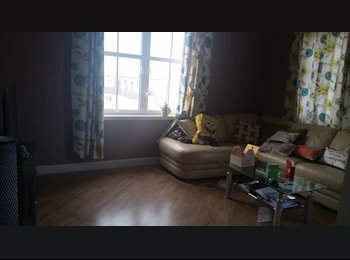 EasyRoommate UK - room to let in West end flat - Aberdeen, Aberdeen - £650 pcm