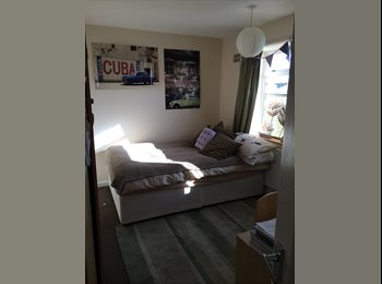 EasyRoommate UK - 3 students looking for a fourth to fill lovely double room! - Earlham, Norwich and South Norfolk - £290 pcm