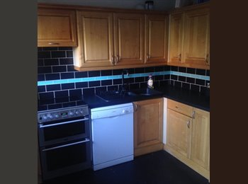 EasyRoommate UK - Double room available - Central/Cardiff Bay area - Butetown, Cardiff - £380 pcm
