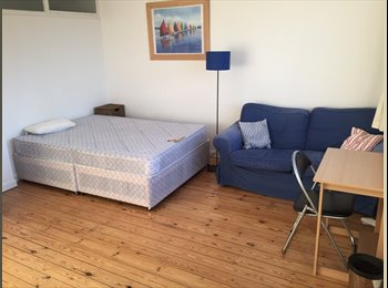 SPACIOUS AND BRIGHT ROOM IN 4 BED FLAT IN PIMLICO