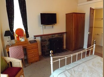 EasyRoommate UK - Paying Guests - Torquay, Torquay - £390 pcm