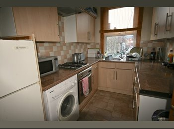 SUMMER LET 1 BED AVAILABLE IN 4 BED HOUSE SHARE