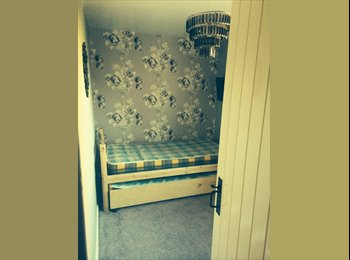 Cute single room available with country charm!