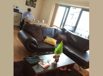 EasyRoommate UK - A comfortable, cut-price Flat !!! - Colchester, Colchester - £380 pcm