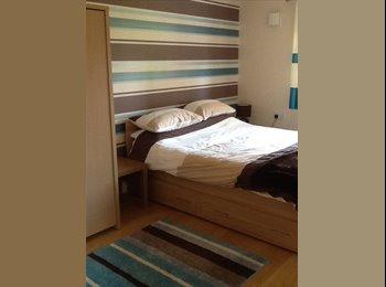 EasyRoommate UK - A clean double room - Basingstoke, Basingstoke and Deane - £450 pcm