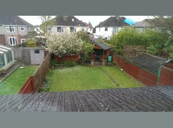 EasyRoommate UK - Spacious double room in large house - Cheylesmore, Coventry - £300 pcm