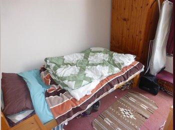 EasyRoommate UK - Single room in spacious house,Leytonstone - Leytonstone, London - £400 pcm