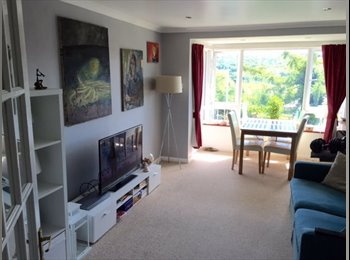 Spacious double room, 1 minute walk from station