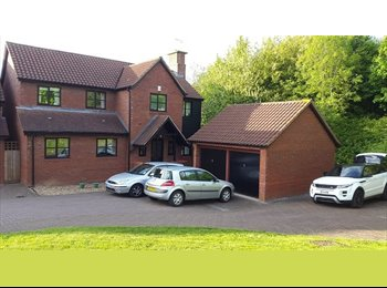 EasyRoommate UK - **DOUBLE ENSUITE ROOM** - FANTASTIC LOCATION! - Loughton, Milton Keynes - £535 pcm