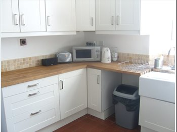 EasyRoommate UK - Terraced House in Plymouth - Plymouth, Plymouth - £400 pcm