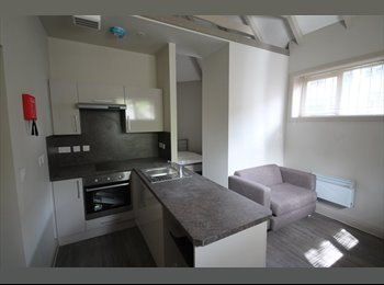 LARGE STUDIO APARTMENT LANDCROSS HOUSE FALLOWFIELD