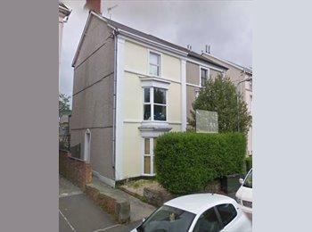 EasyRoommate UK - 1 double bedroom avaiable - Swansea, Swansea - £325 pcm