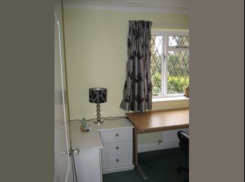 EasyRoommate UK - Laerge sunny peaceful double room and bathroom. - Calcot, Reading - £5,000 pcm