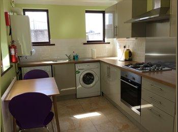 EasyRoommate UK - Great student house 4 bedrooms - Cwm, Swansea - £420 pcm