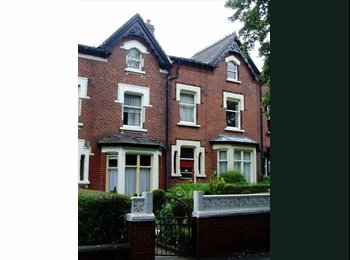 EasyRoommate UK - Two Double Rooms Available in professional shared - Chapeltown, Leeds - £281 pcm