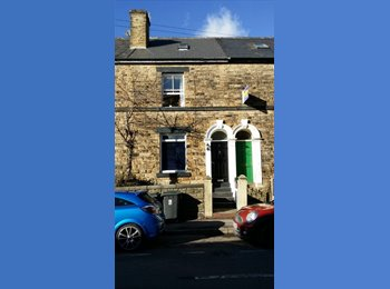 EasyRoommate UK - student accommodation - Broomhill, Sheffield - £200 pcm