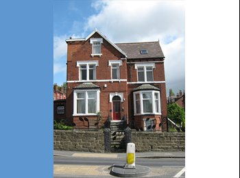 One large double room to rent in professional shar