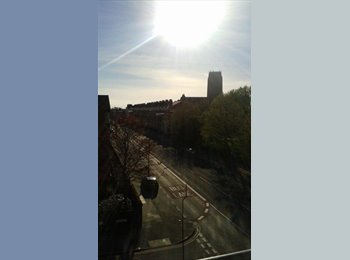 EasyRoommate UK - Flat near to city centre - Toxteth, Liverpool - £230 pcm
