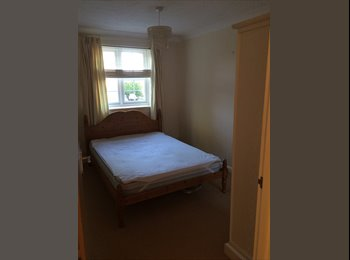 EasyRoommate UK - Room to rent in spacious modern flat - St. Albans, St Albans - £620 pcm