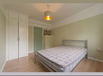 EasyRoommate UK - Lovely, large double room in West Dulwich - East Dulwich, London - £600 pcm