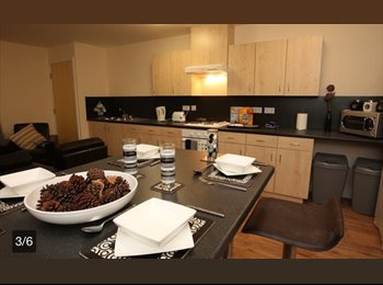 EasyRoommate UK - Perfect Private Flat ROOM! - Liverpool Centre, Liverpool - £505 pcm