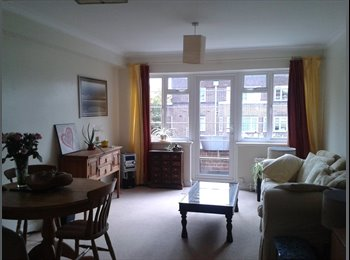 room available during the summer for a female