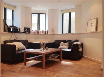Double room in friendly flatshare June & July . E1