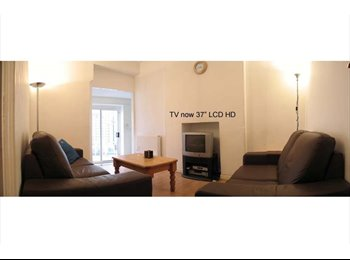 EasyRoommate UK - Good Size Double Sociable Young Prof House - Cathays, Cardiff - £290 pcm